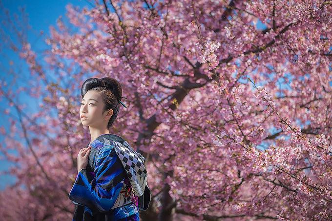 桜ロケーション01