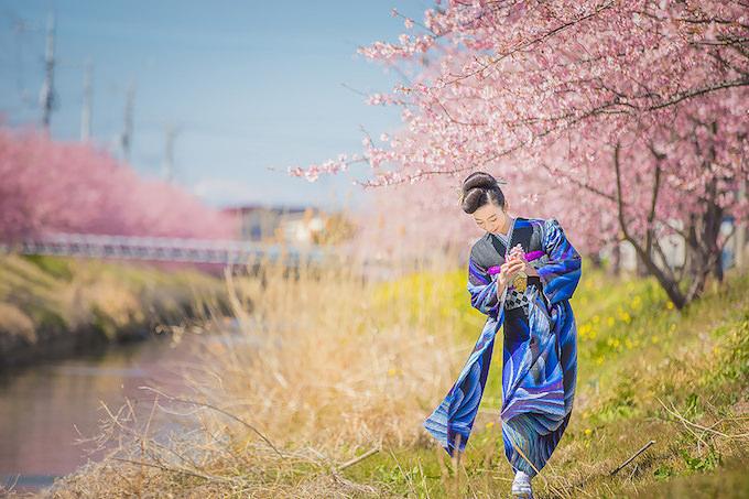 桜ロケーション06
