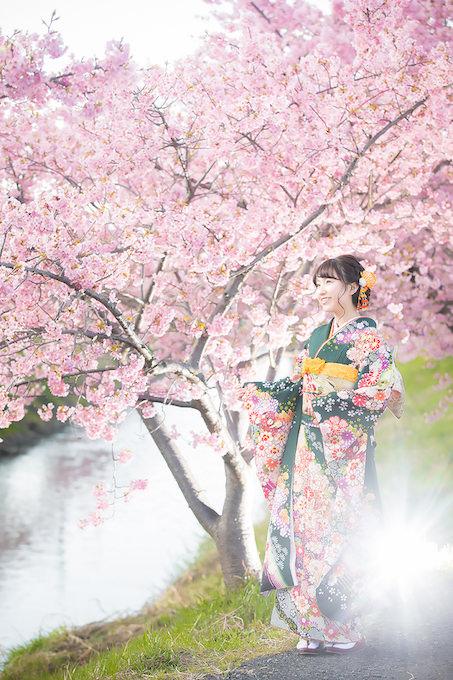 桜ロケーション08