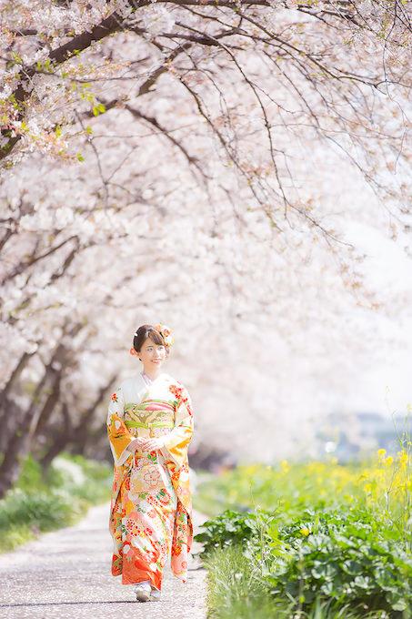 桜ロケーション09