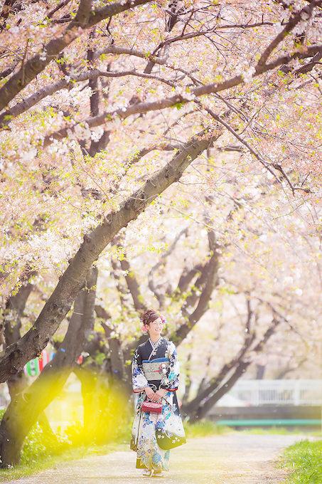 桜ロケーション20