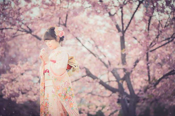 桜ロケーション22
