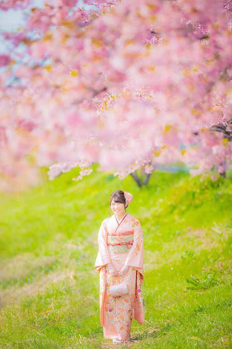 桜ロケーション26