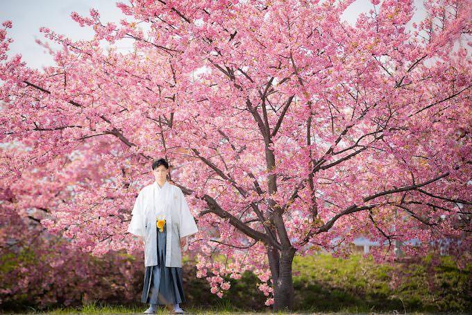 桜ロケーション30